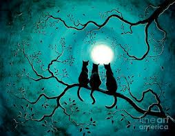 """Résultat de recherche d'images pour """"cat in the moon"""""""