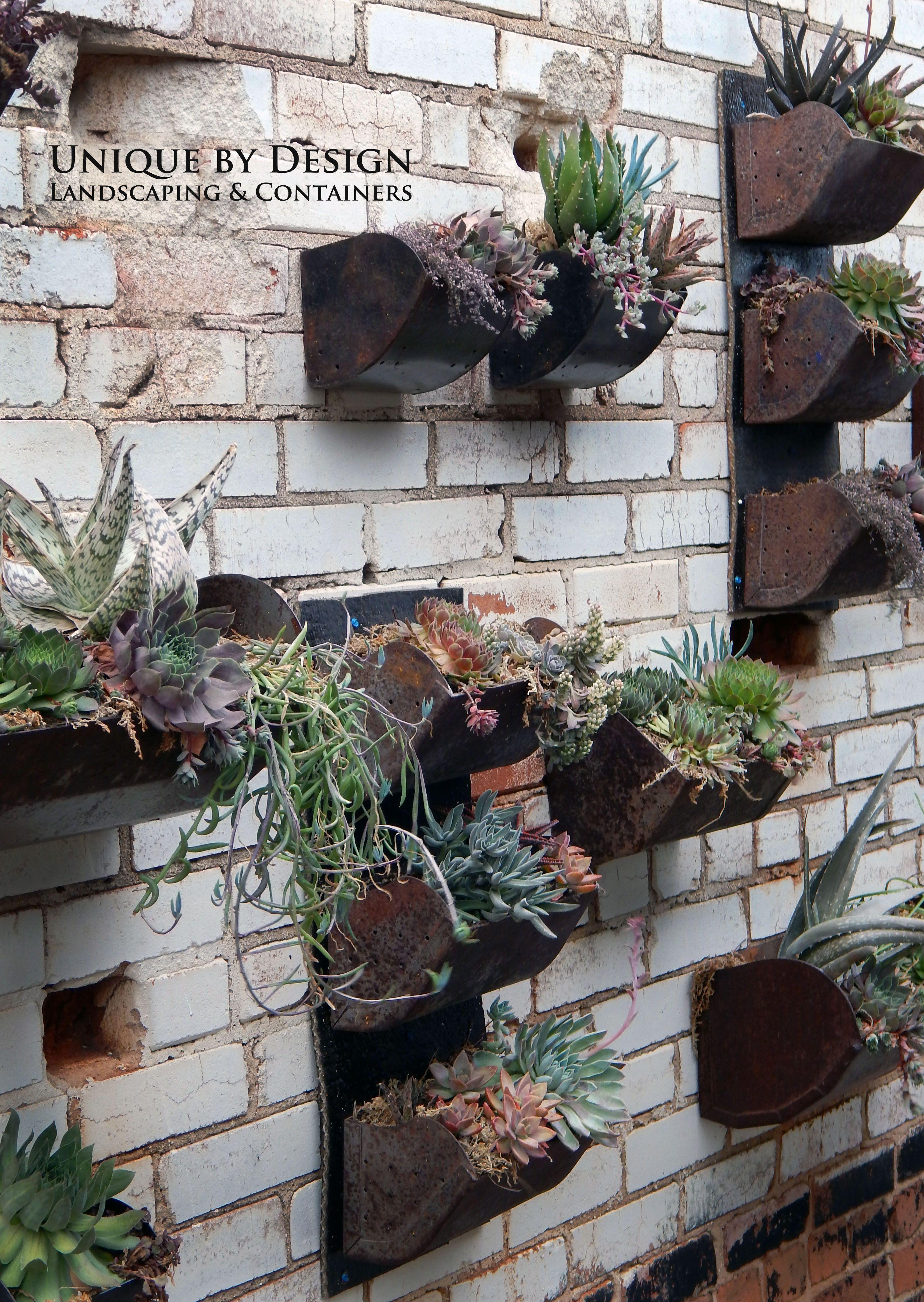 Living Succulent Wall L Rooftop Downtown Okc L Unique By