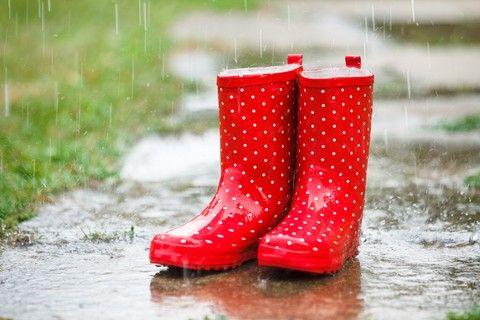 Картинки по запросу autumn rainy days