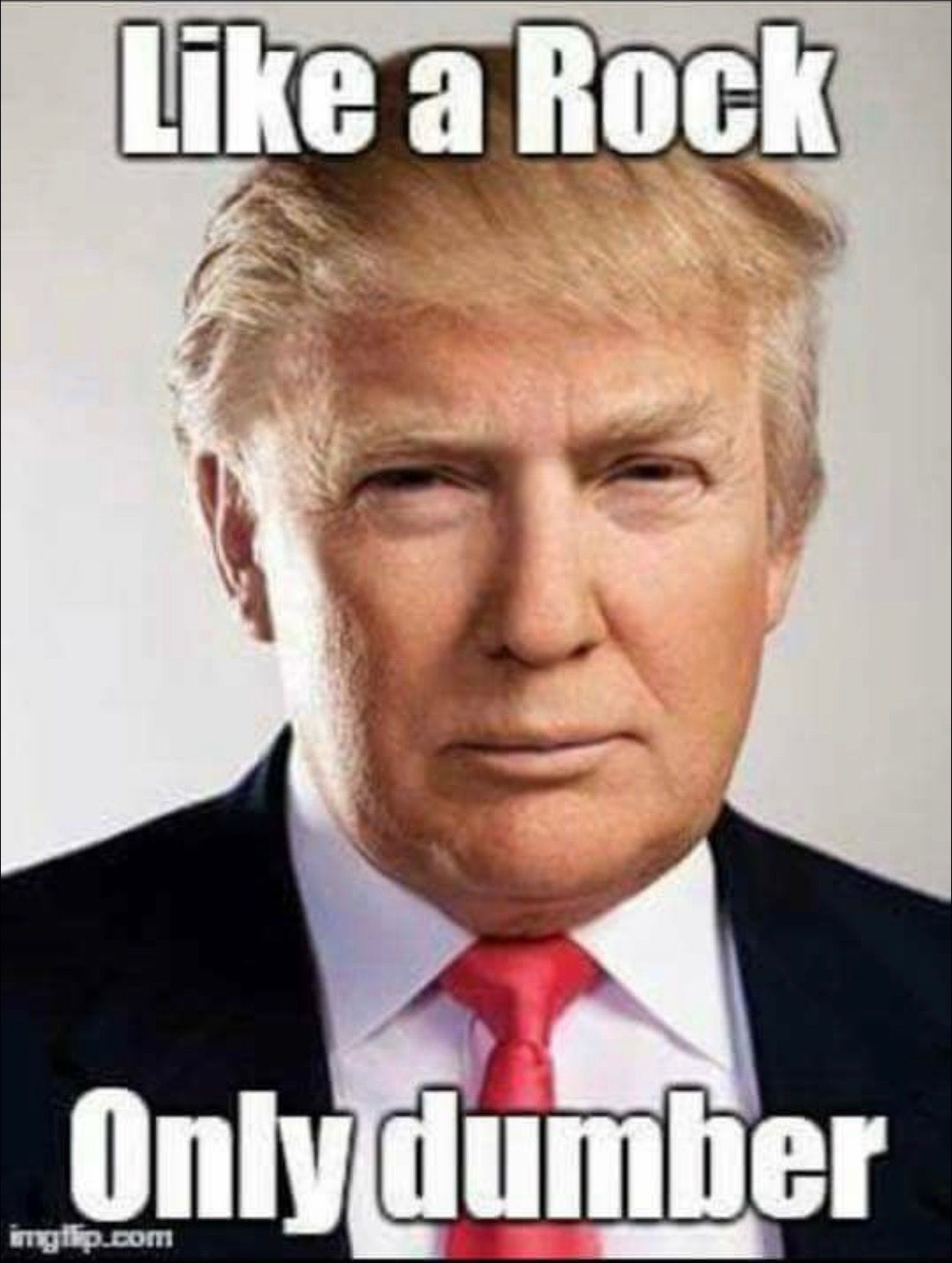 13620288 637429713079830 2276231311583805220 N (403 384) - Bathrooms - Pinterest - Donald Trump,