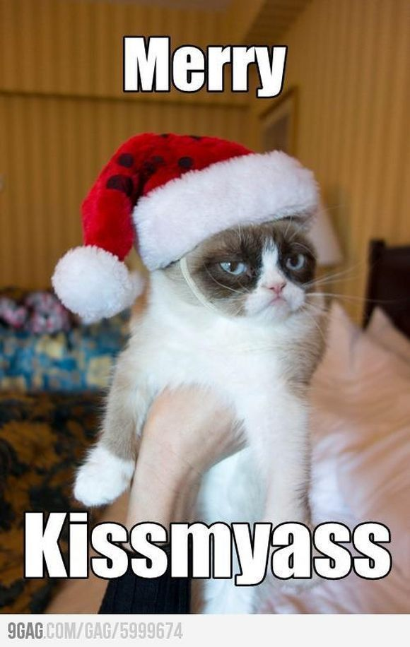A little Grumpy Cat humor on this fine Christmas Day