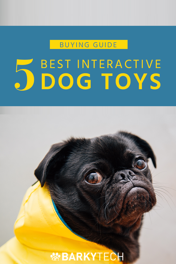 Interactive Dog Toys Exercise
