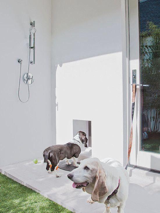 Outside Dog Wash Station Dog Washing Station Pet Washing