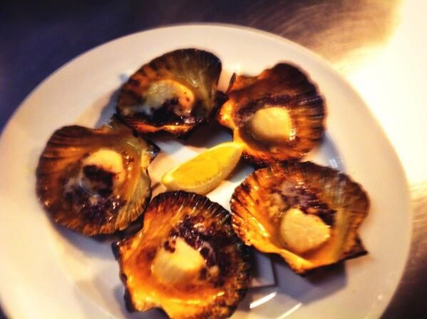 Scallops in the shell roasted in the Josper