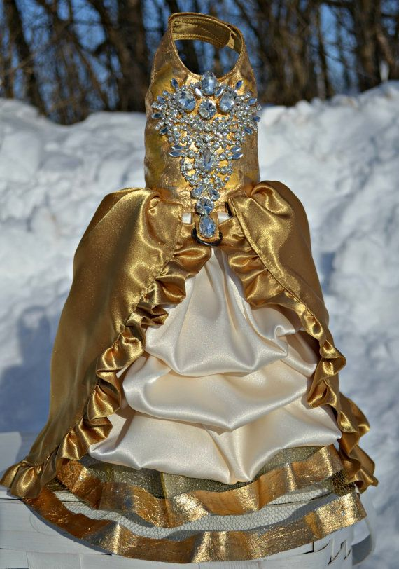 Gold 24 Karat Dog Harness Dress With Bling By Kocouture On Etsy