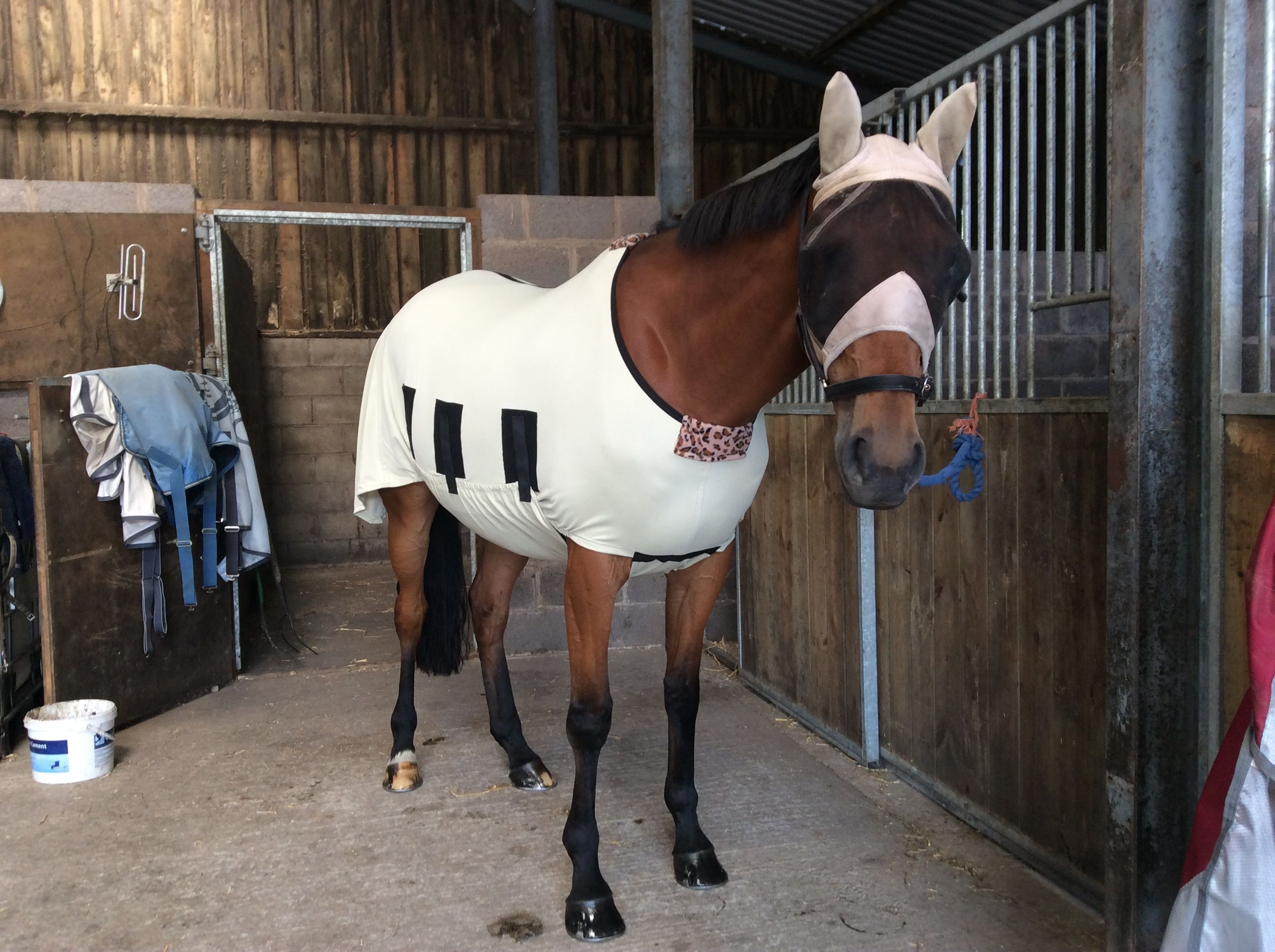 Horse Hoods And Rugs Turnout Weatherproof Jams Fleece Le Shiny Show Lycra Rugore