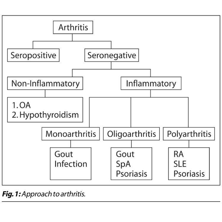 artrita seronegativa