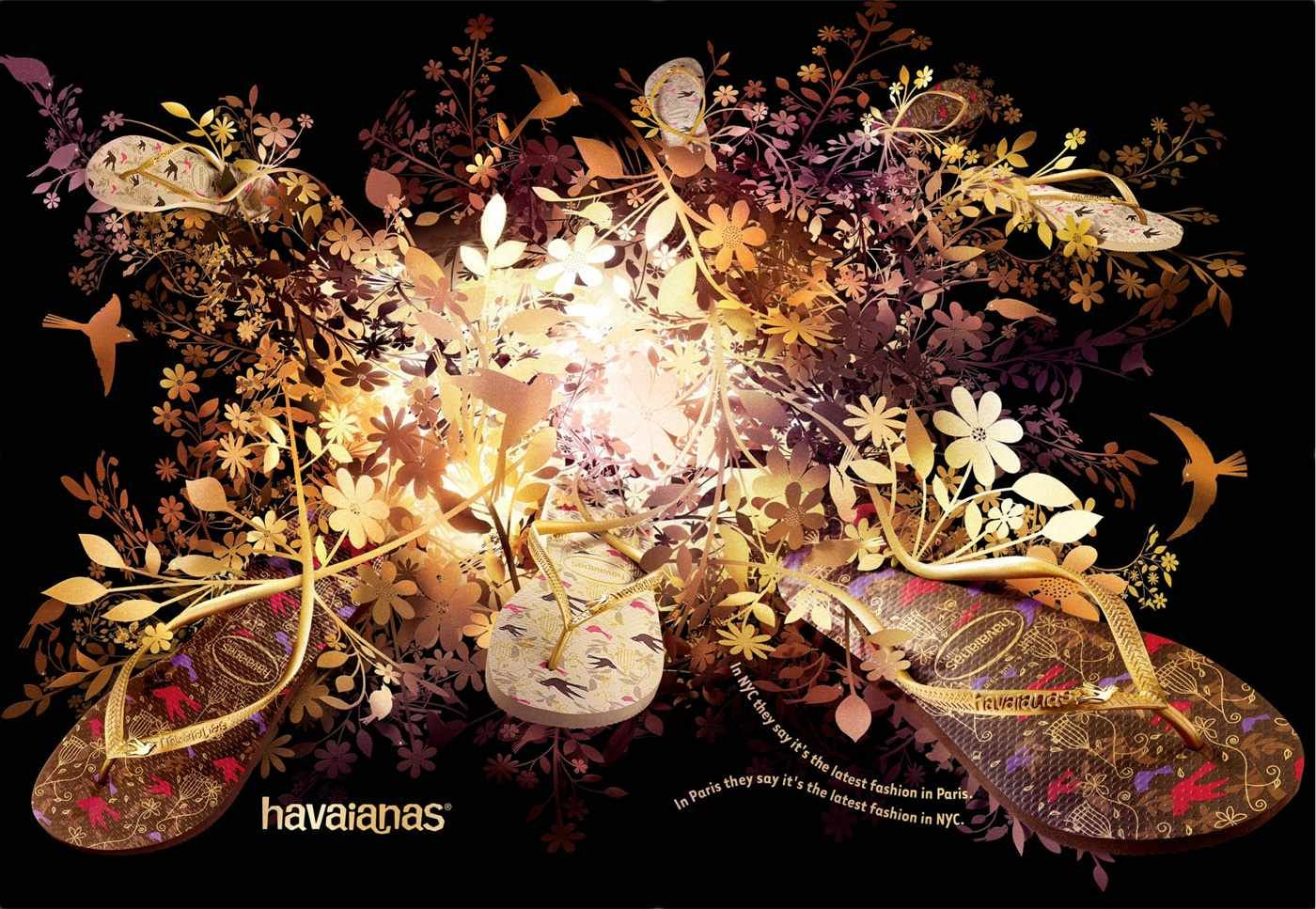 Havaianas:  Golden bird
