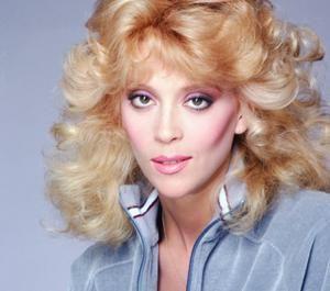 Judy Landers Actresses Hollywood Stars Long Hair Styles