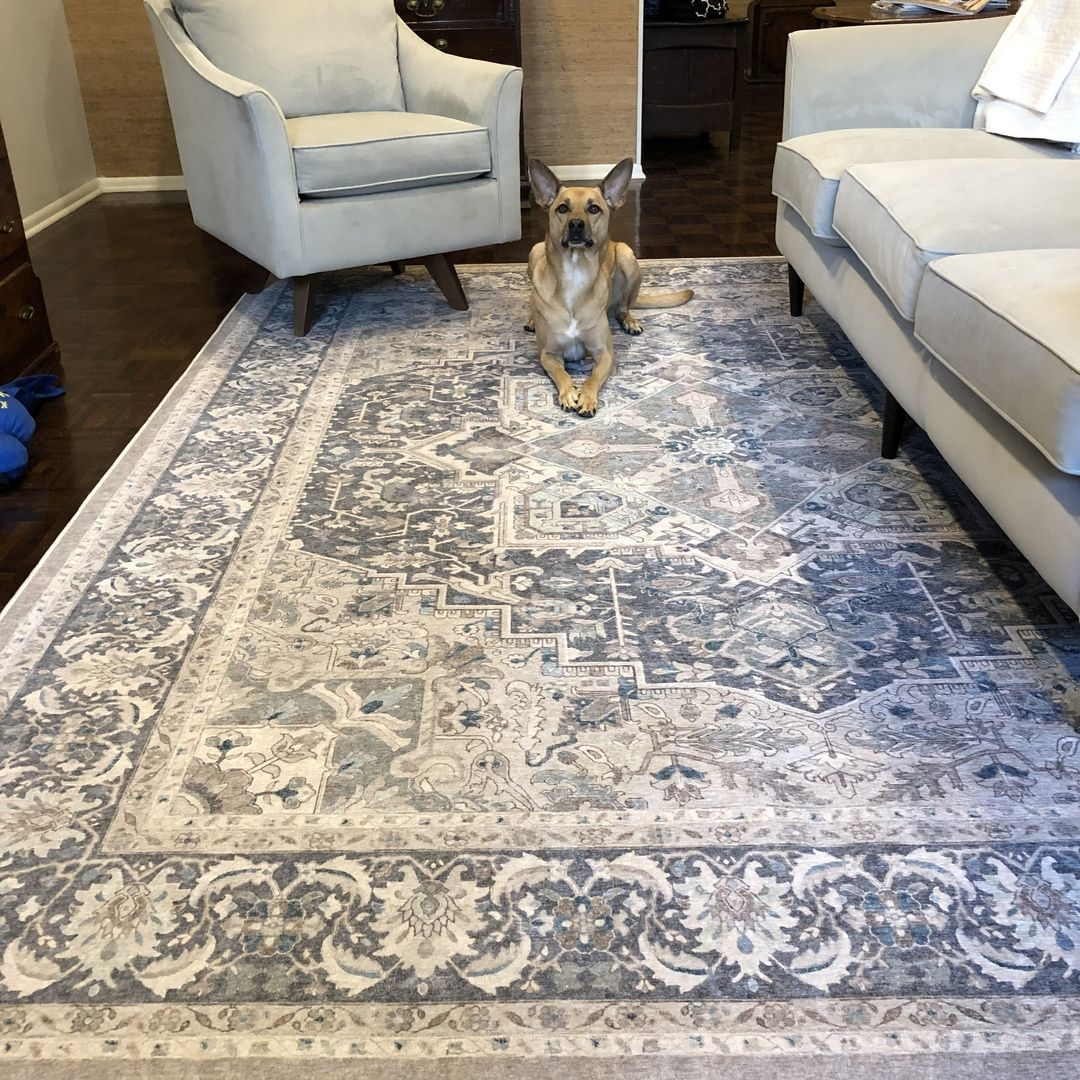Pin On Rugs #rug #over #carpet #living #room