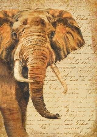 Cuadrostock com tienda online de cuadros animales - Cuadrostock ...