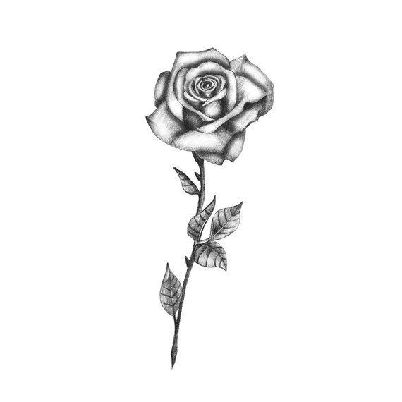 Delicate Bw Rose Temporary Tattoo Rose Temporary Tattoo Black