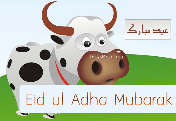 Simple Bakra Eid Al-Fitr Feast - a46aa8440e0d9c094e18f5c2646e9436  Best Photo Reference_949752 .jpg
