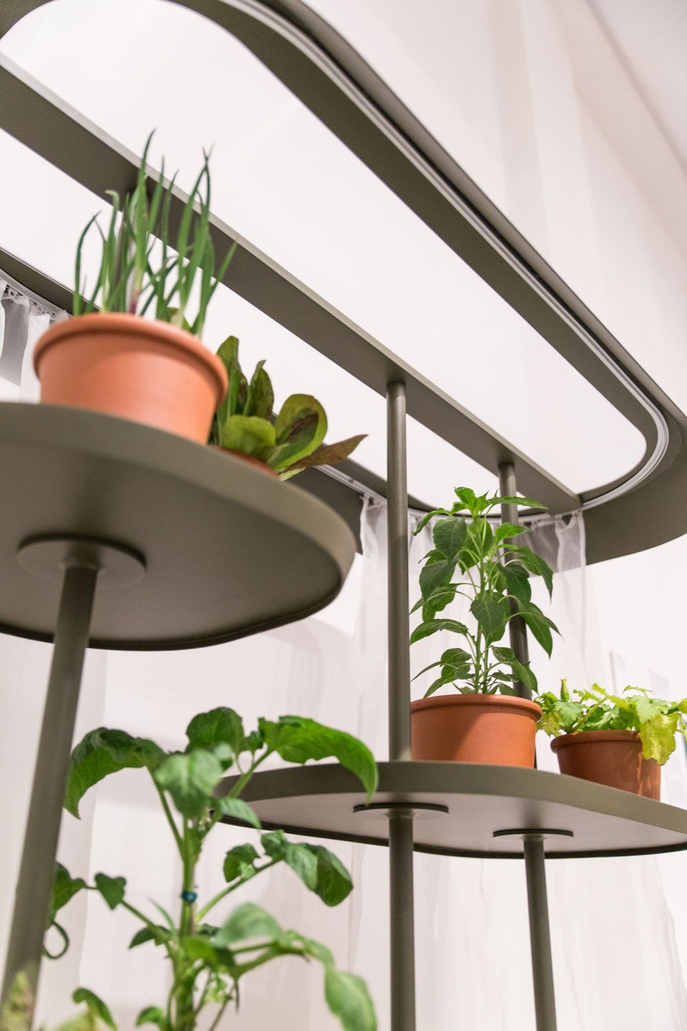 Flatpack Greenhouse Is A Minimalist Design Created By Stockholm Based  Designer Jonas Wagell For Kettal.