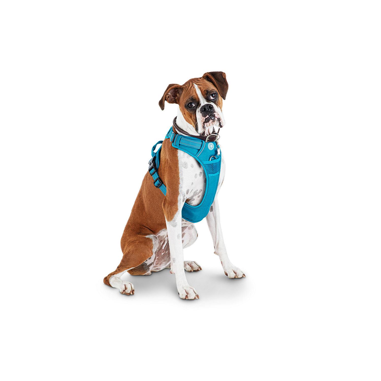 Good2go Blue Front Walking Dog Harness Large Dog Harness Dog