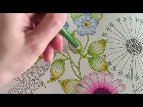 secret garden basic flower coloring coloring with colored pencils youtube