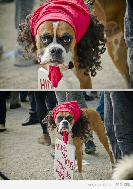 He Looks Exactly Like Antoine Dodson Dont Have A Dog But If I