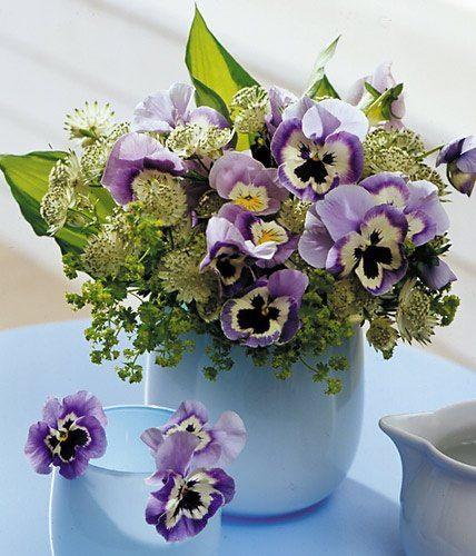 schones schone herbstblumen erfreuen unser auge im september gefaßt abbild oder adcdfeecefab