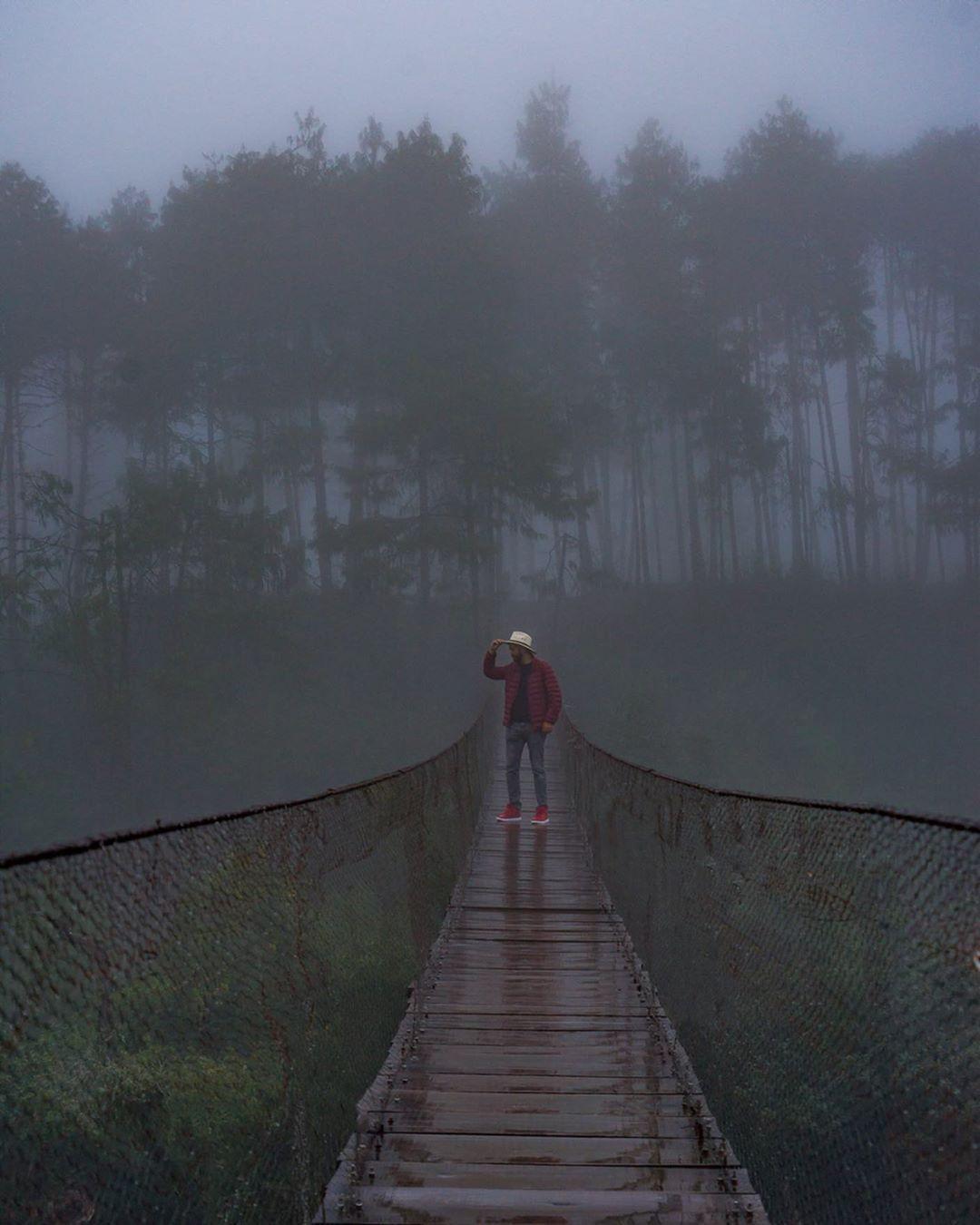 visitante caminando por el puente colgante de honey