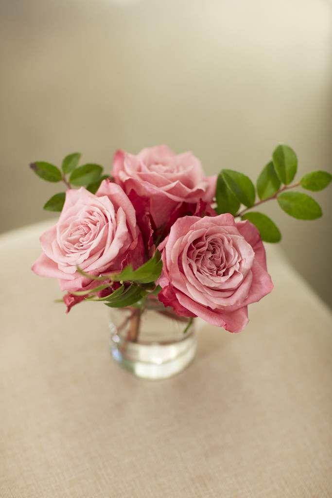 Bloominous pink lemonade diy wedding flowers for a pink and bloominous pink lemonade diy wedding flowers for a pink and yellow wedding mightylinksfo