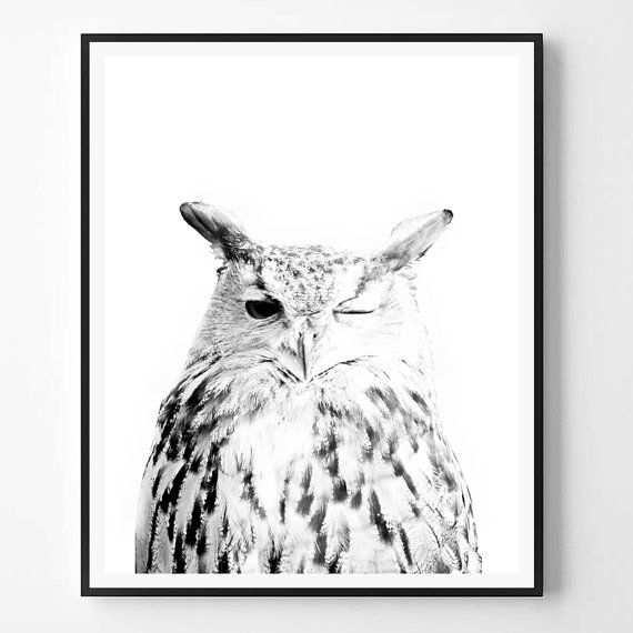 Pin by Callie Jones on For the Home Bird prints, Owl art, Art