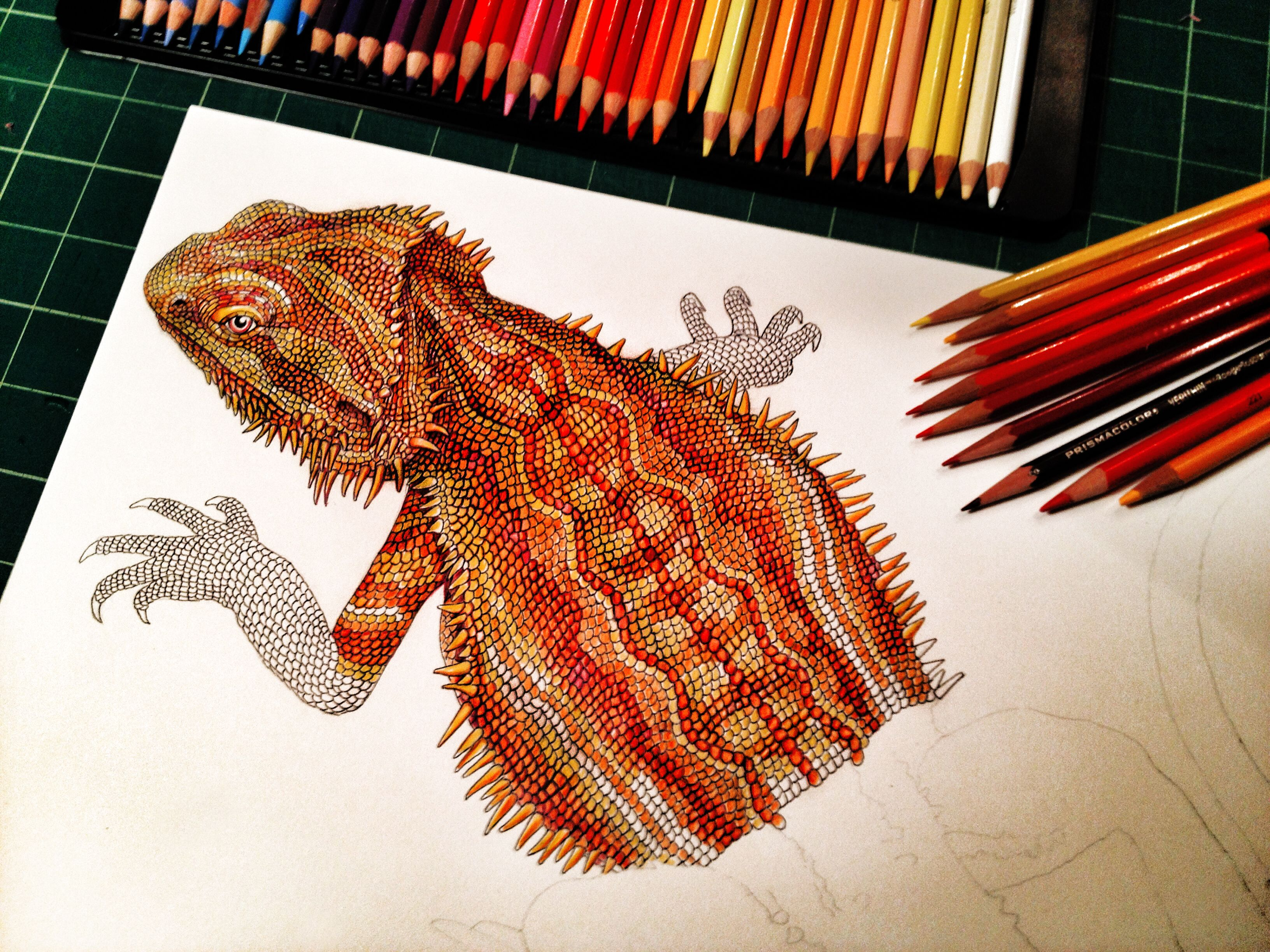 about half done with my pogona or bearded dragon prints of over