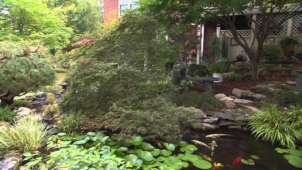 Fabulous Shade Garden With Japanese Trees Of Leon Olenick Video Garden Tours Zen Garden Shade Garden Backyard farmer garden unl