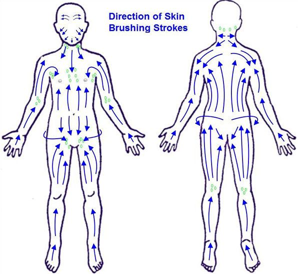 Lymphatic Brushing Chart How To Get The Best Results