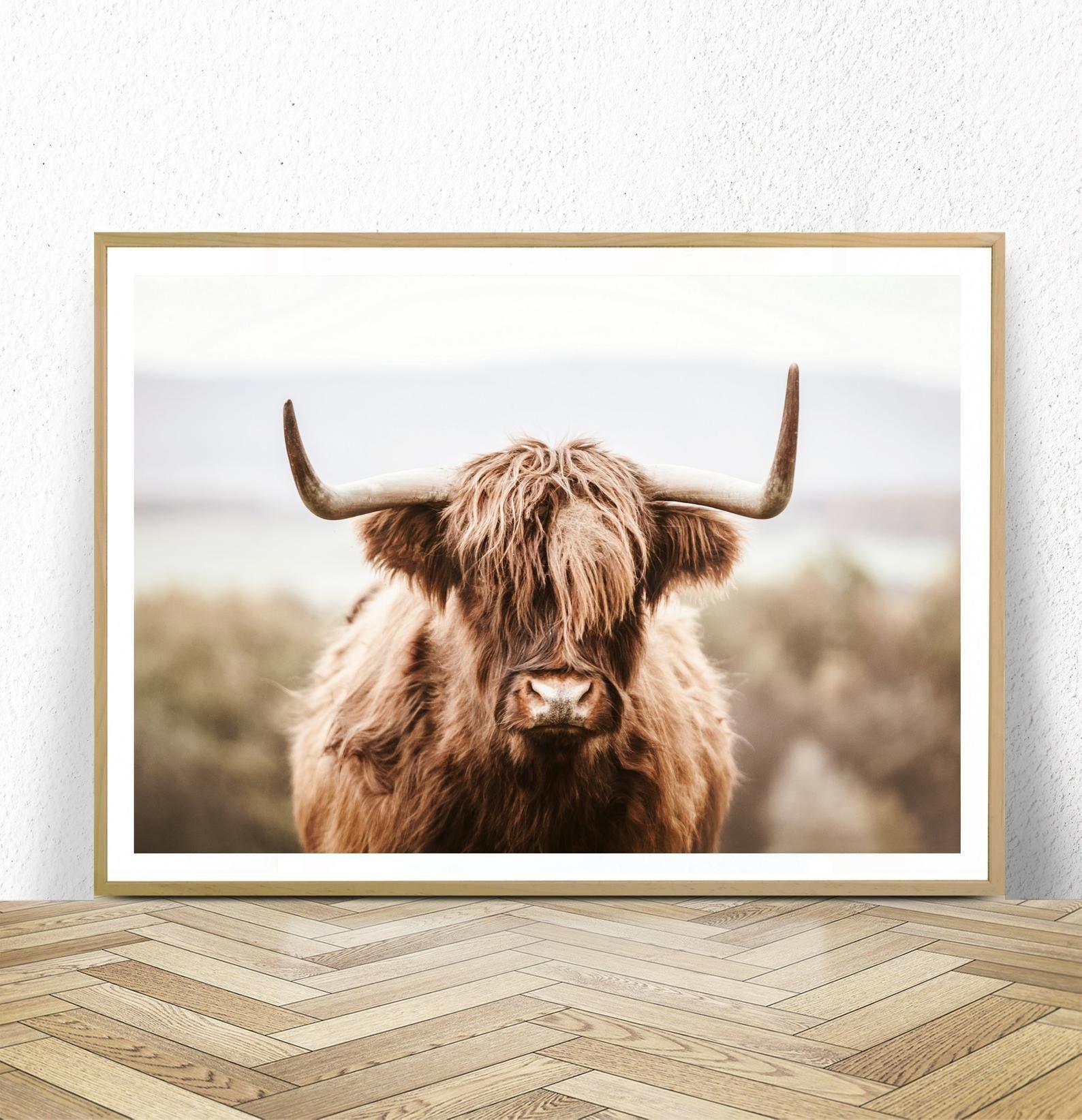 Highland Cow Print Digital Download Farm Animal Print Etsy In 2020 Highland Cow Print Cow Wall Art Farmhouse Wall Art