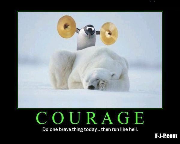Penguin Polar Bear Courage Meme Laughter The Best Medicine Humor