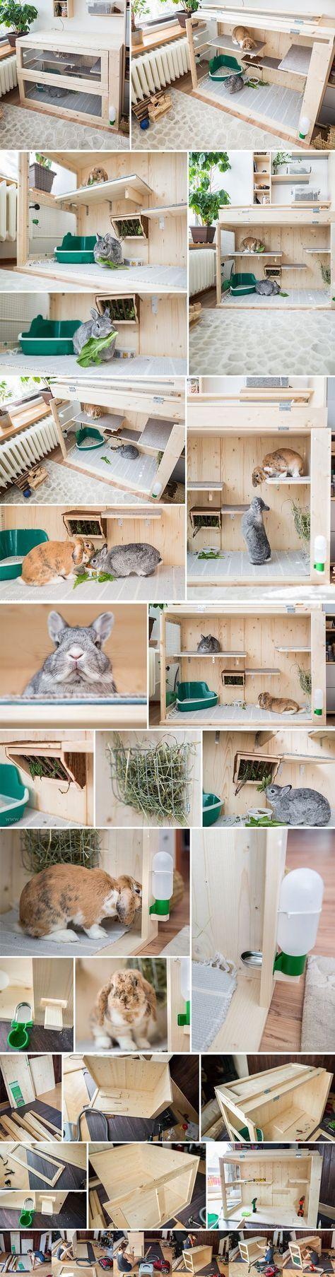 22e658c17407e812d190f957188a3730.jpg 736×2,806 pixels | Rabbit Care ...