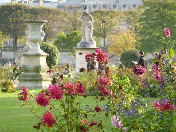 l automne fleuri dans le jardin des tuileries paris 1er. Black Bedroom Furniture Sets. Home Design Ideas
