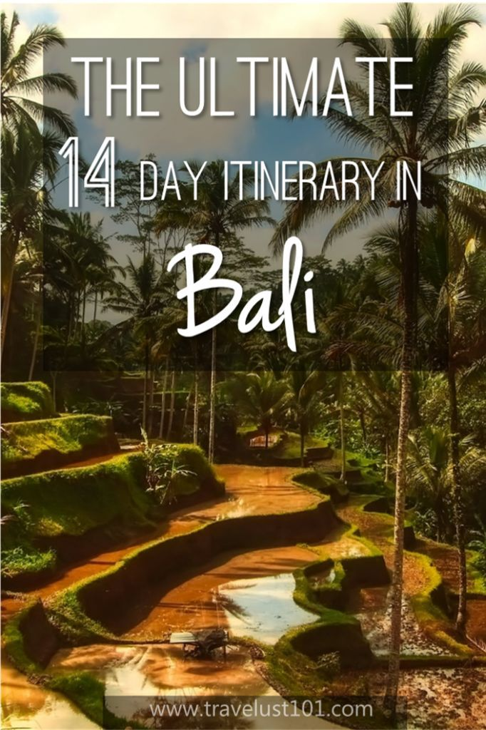 Bali   Bai Trip   Bali Travel   Bali Indonesia   Planning your first trip to Bali? Make sure to check out this comprehensive guide covering all the highlights! #bali #bestofbali #solotravel #solofemaletravel #bali #balitravel #tripitinerary