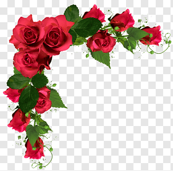 Rose Flower Bouquet Wedding Flowers Red Roses Frame Illustration Free Png Flower Png Images Flower Bouquet Png Blue Flower Png