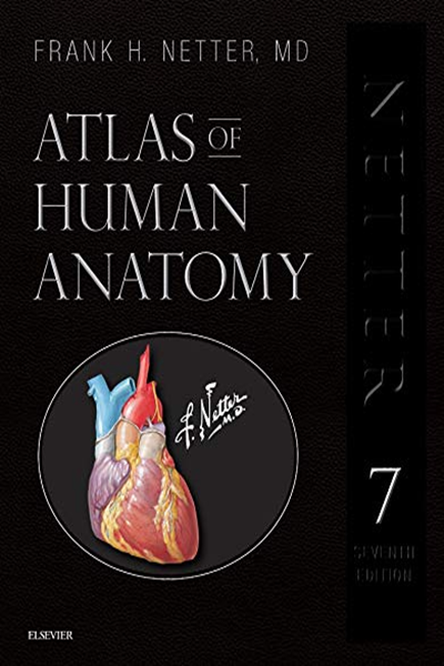 Atlas Of Human Anatomy Professional Edition Including Netterreference Com Access With Full Downloadable Image Bank Netter Basic Science By Frank H Netter Human Anatomy Anatomy And Physiology Book Anatomy