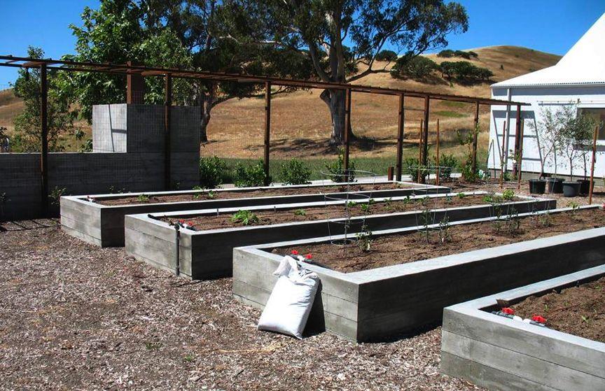 Board Formed Concrete Raised Beds Garden Beds Veggie Garden