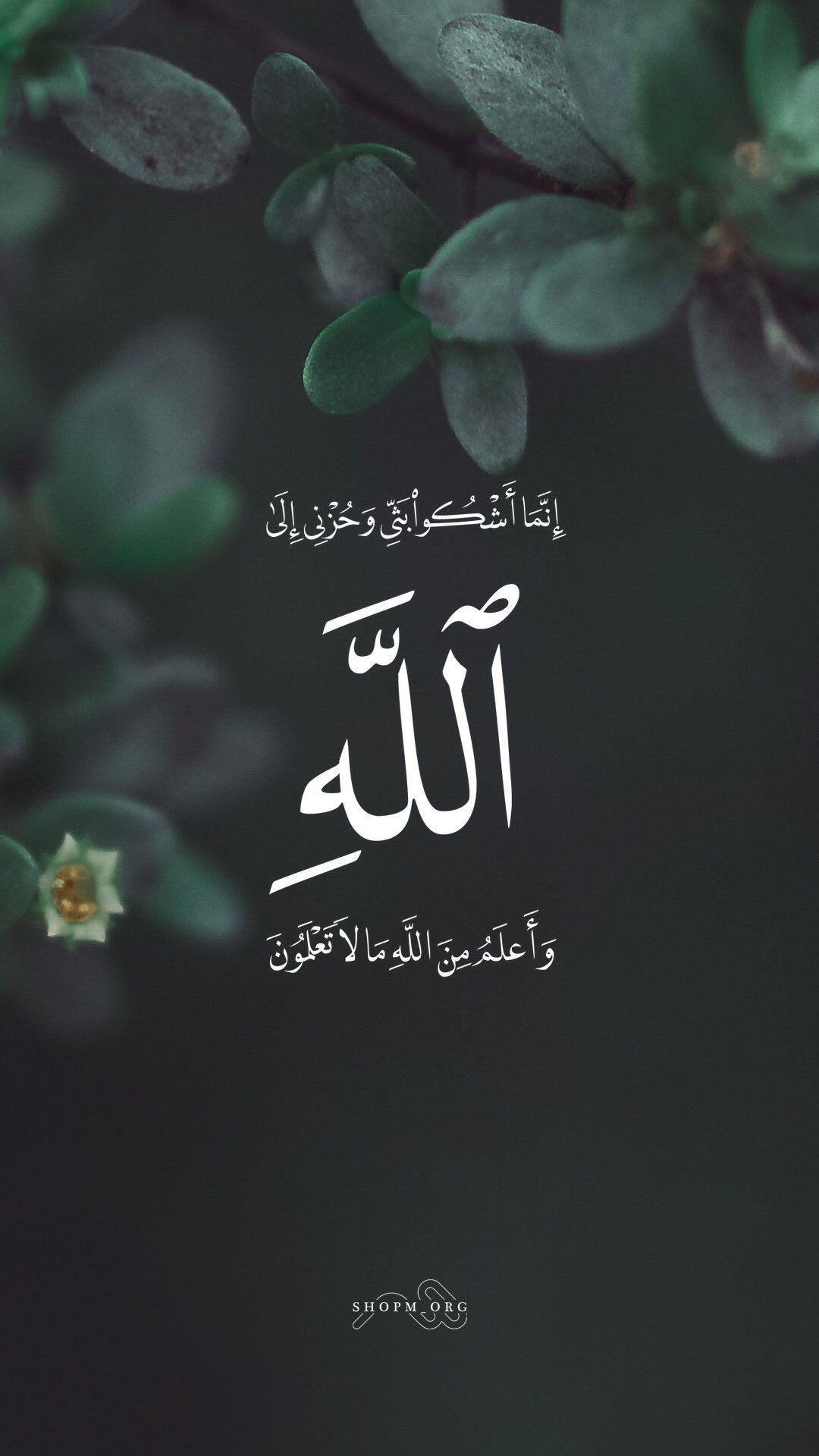 Pin De Hassan El En Corán Islam Frases En árabe Y Fondos