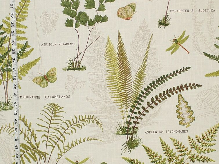 Fern Fabric Butterfly Dragonfly Botanical Toile From Brick