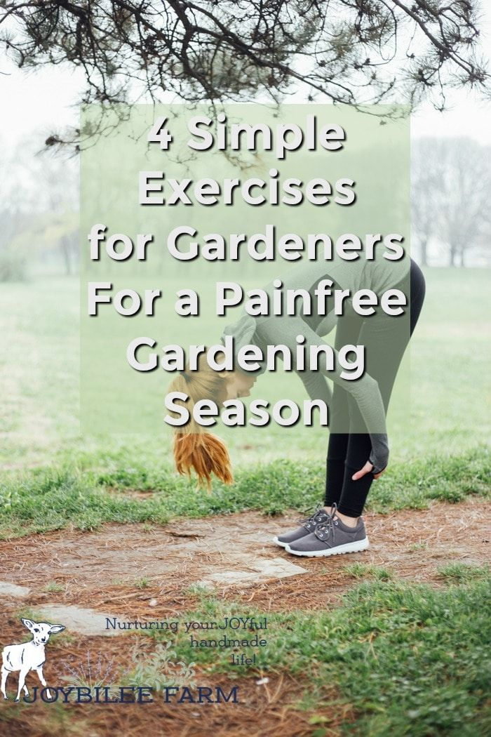 4 Simple Exercises for Gardeners For a Painfree Gardening
