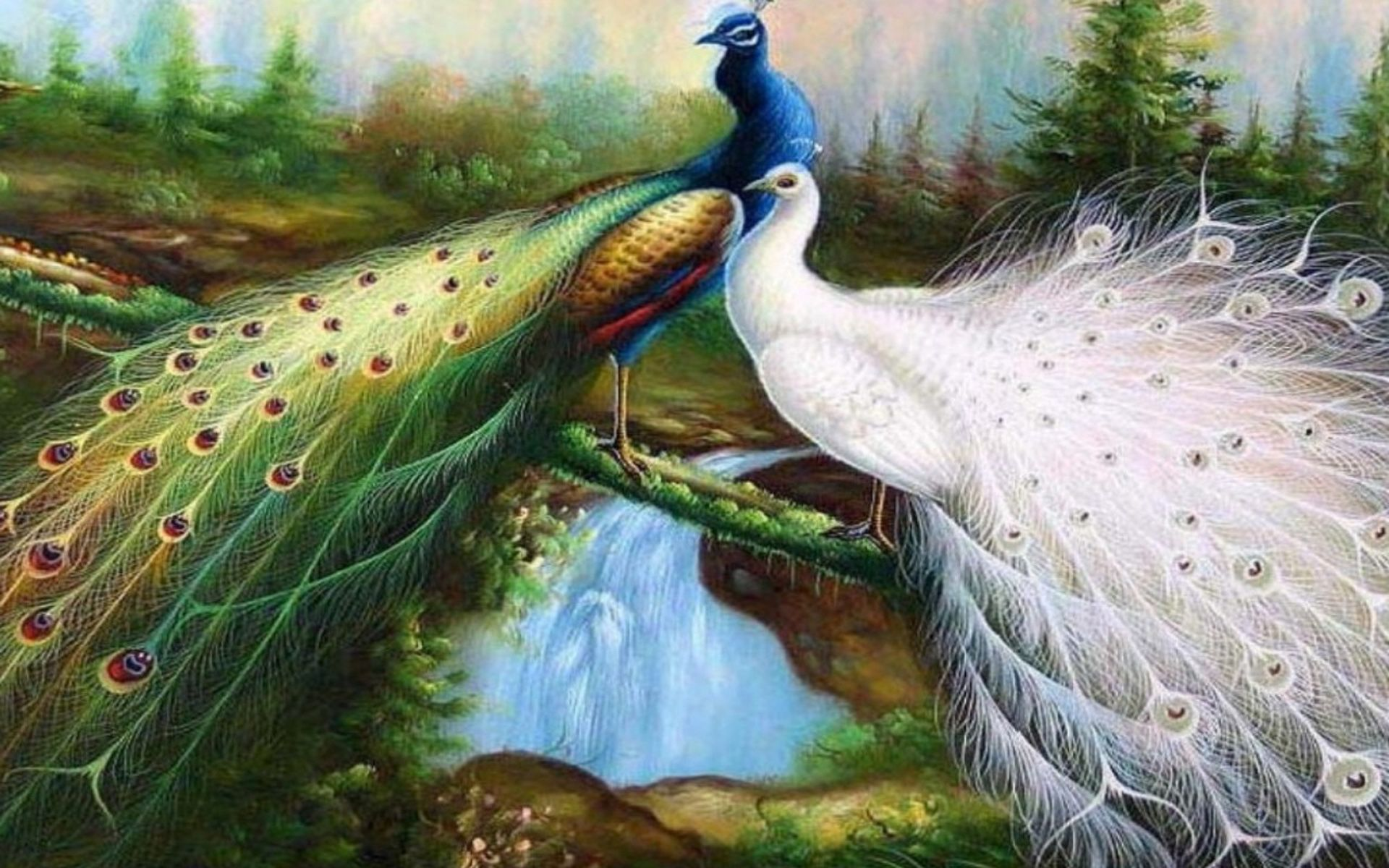Peacock wallpaper roaming in garden 3DHD Wallpaper