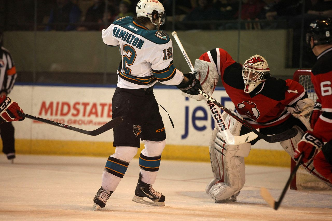 Worcester Sharks forward Freddie Hamilton swings for the puck (March 9, 2014).