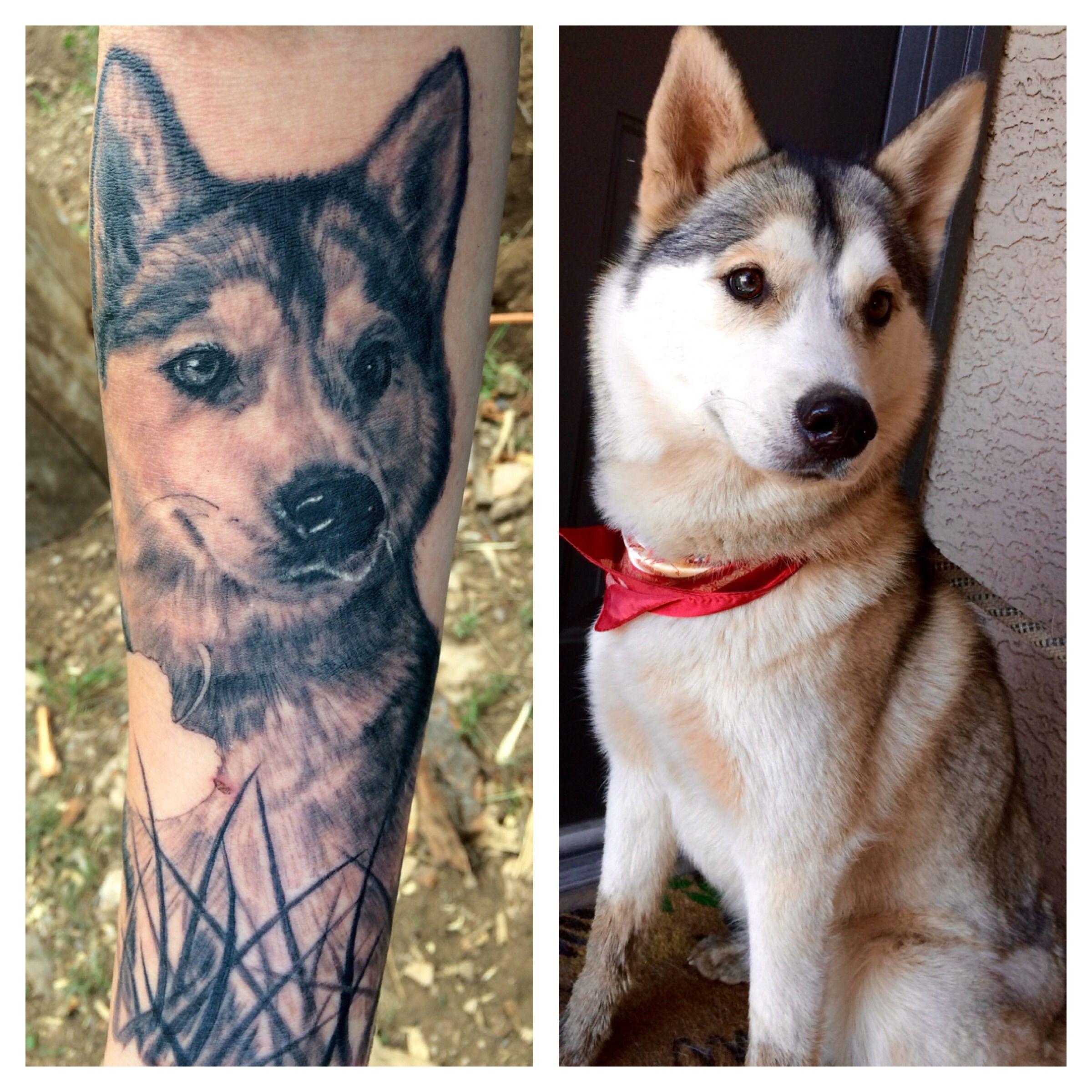Husky Portrait Tattoo Realistic Black And White Dog Tattoos Husky Tattoo Husky