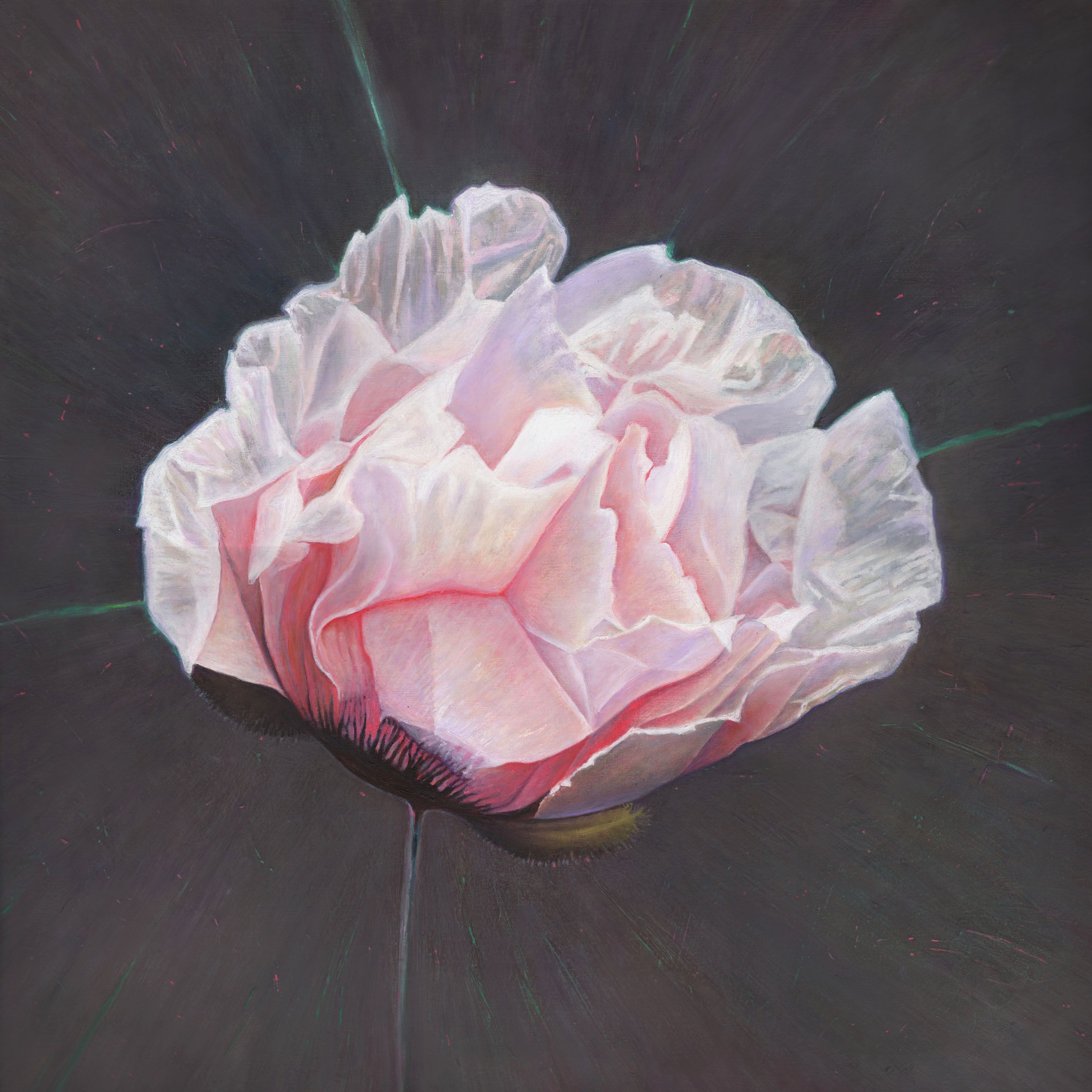 'Emergence' painting in oil by contemporary artist Helen White, see more on www.paintinglight.org