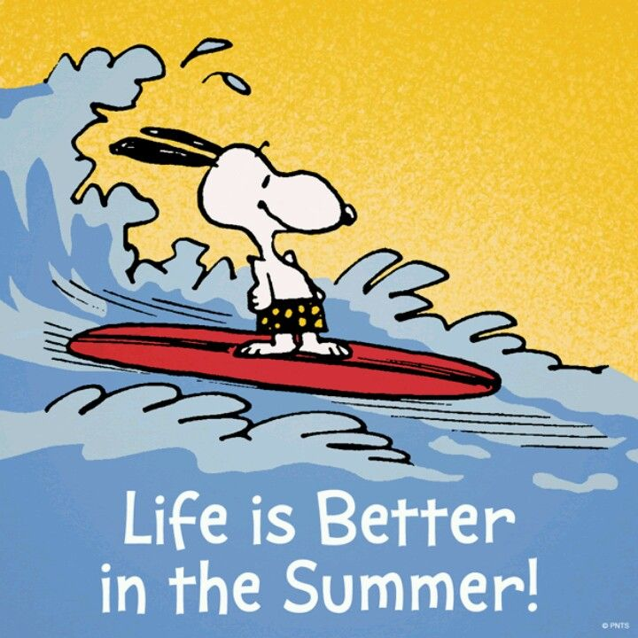 Surf dog snoopy summer love snoopy pinterest - Liebling englisch ...