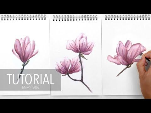 Step By Step How To Draw Color A White Magnolia Flower With Colored Pencils Emmy Kalia Youtube Flower Drawing Cherry Blossom Drawing Floral Drawing
