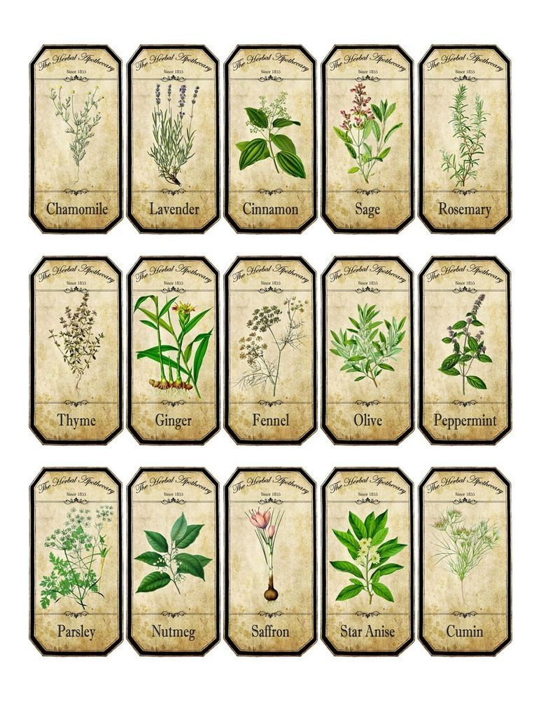Vintage inspired assorted herb spice food tea bottle jar labels stickers