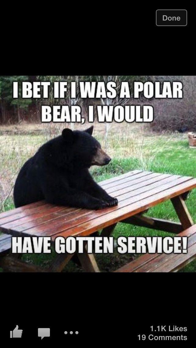 Black bear refused service:(