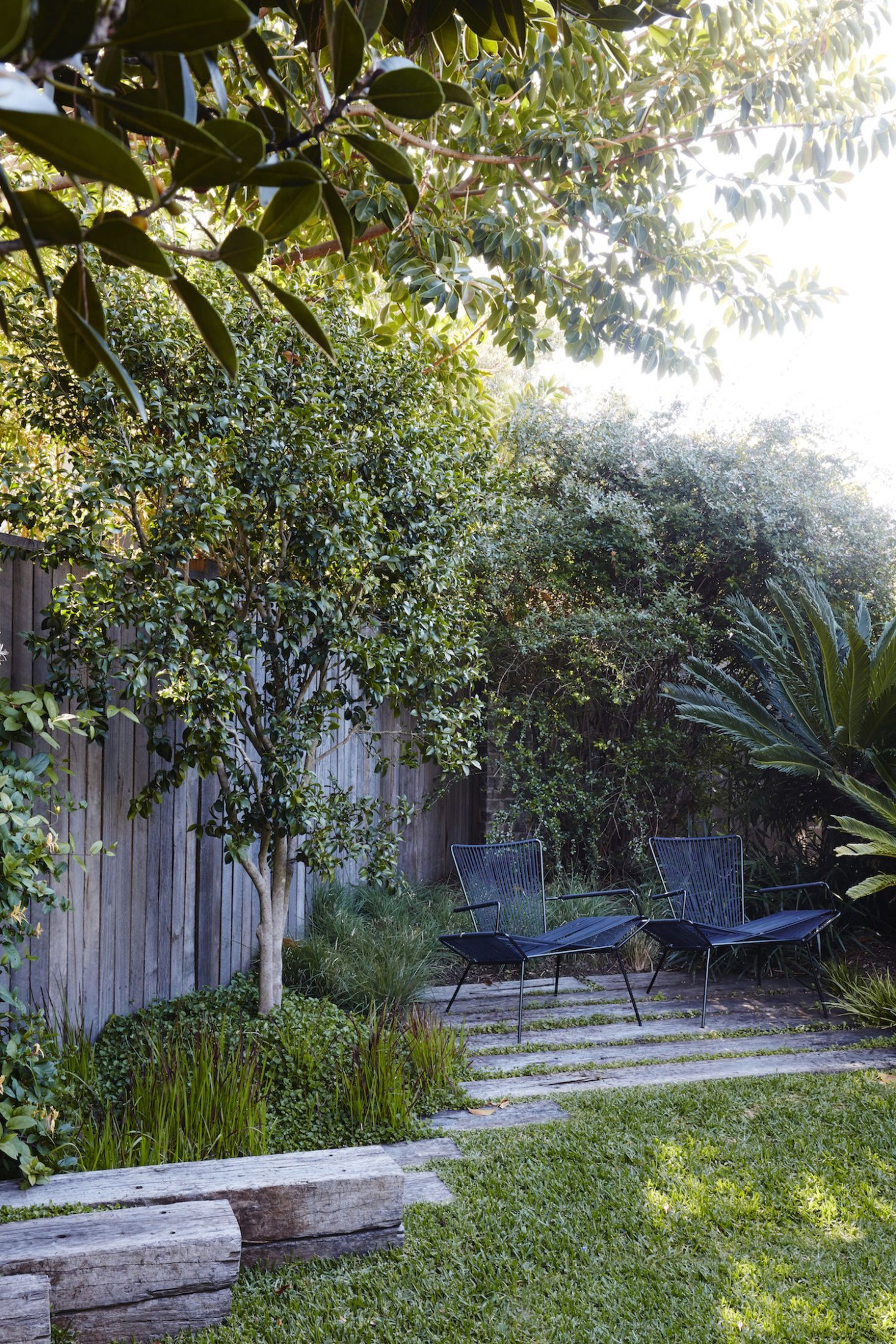 Photo of Australian Landscape Architect William Dangar at Home in Sydney: Downsizing a House to Expand the Garden
