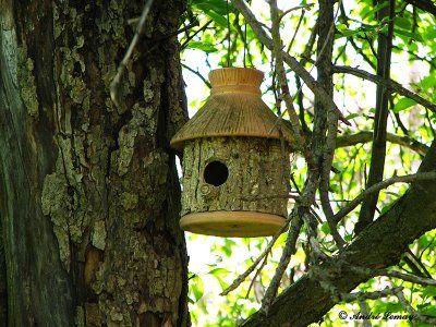 cabane en tronc d 39 arbre oiseaux pinterest tronc cabanes et nichoirs. Black Bedroom Furniture Sets. Home Design Ideas