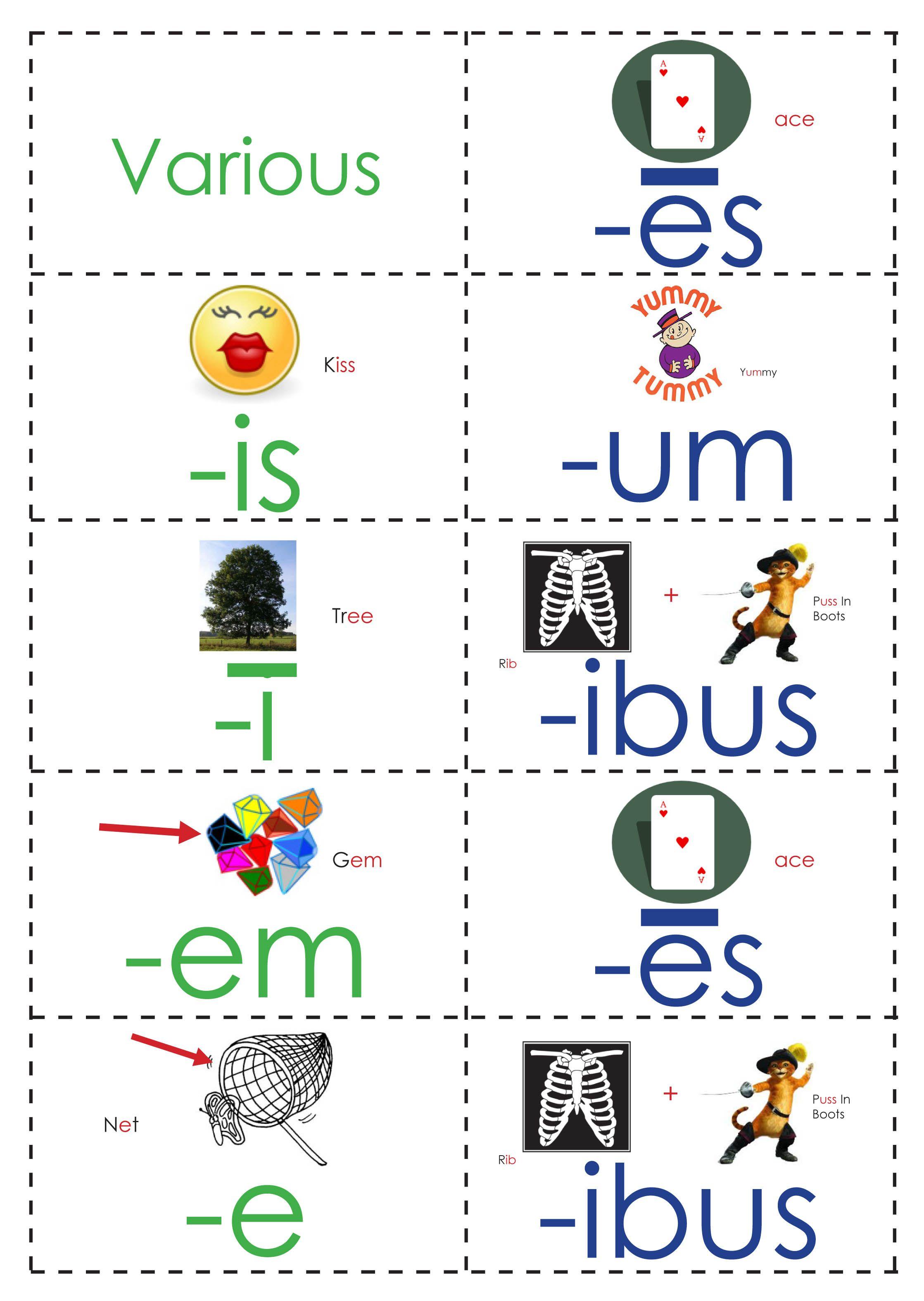 Week 19 Latin Third Declension Packet Classical Conversations Classical Conversations Foundations Teaching Latin